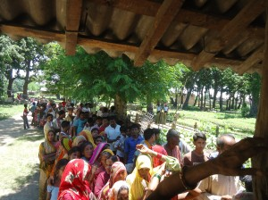 People Waiting in queue to collect Sapling from DPF Nursery (1)