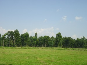 Natural view of Dhanushadham Protected Forest