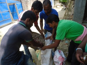 Youth of Mithileshwar Mauwahi collecting vegetables for Earthquake victims