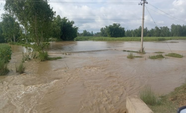 Area full of flood water besides village in Dhanusha