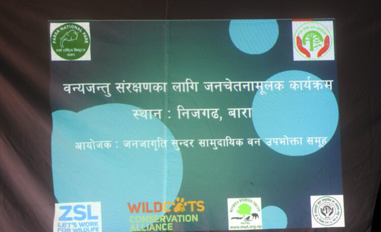 Wild-cat conservation program in Nijgadh, Bara, Province-2, Nepal