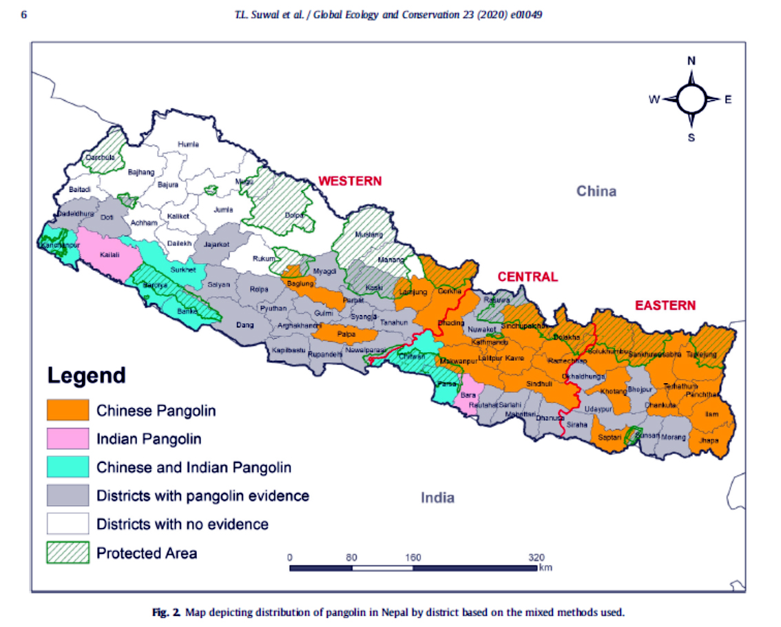 Distribution map of Pangolin in Nepal