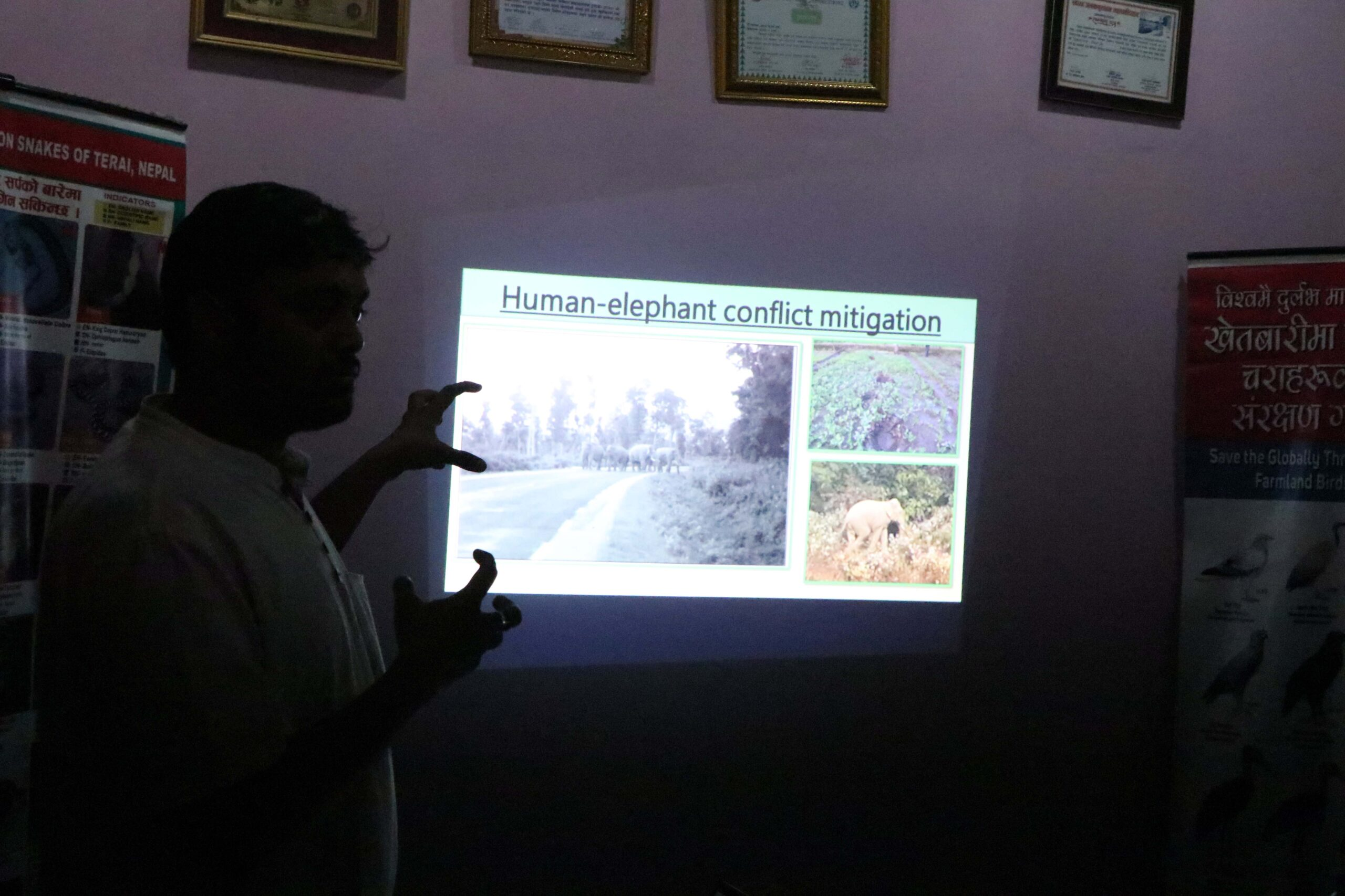 Human-elephant conflict in Province No.-2, Nepal